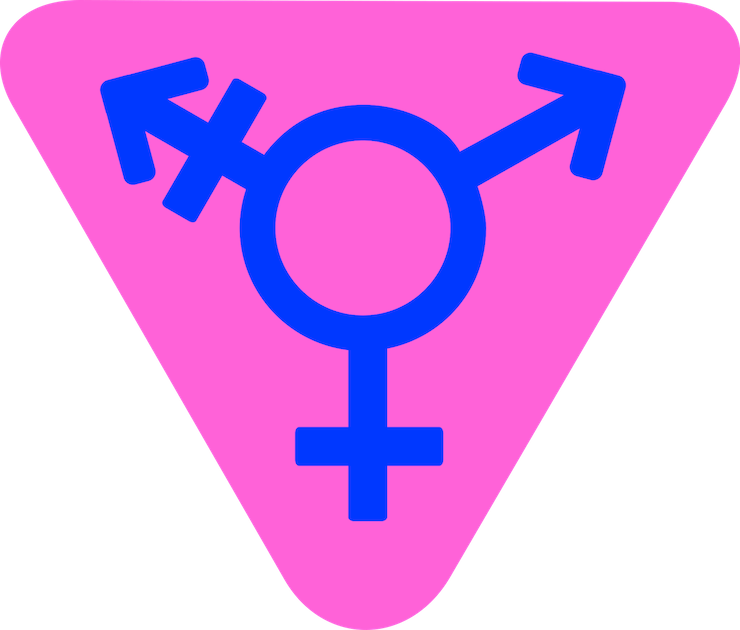 Difference between transgender and transexual