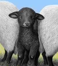How can I change how my family feels about me? I'm treated like the black sheep.
