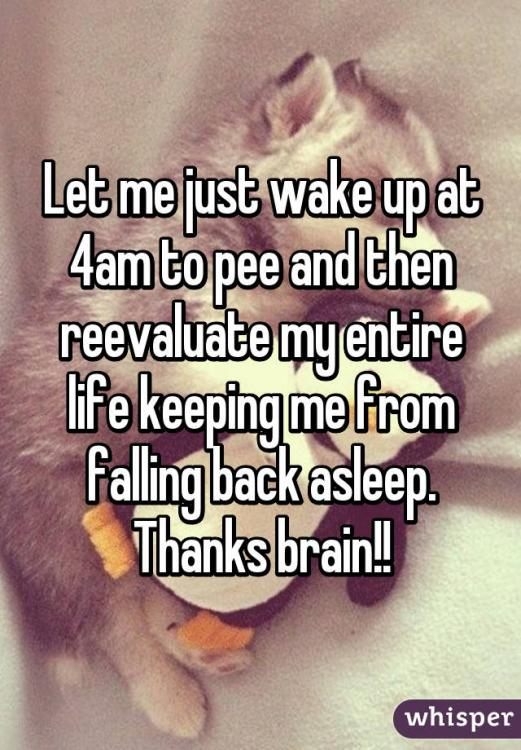 Why do I wake up at 4am?